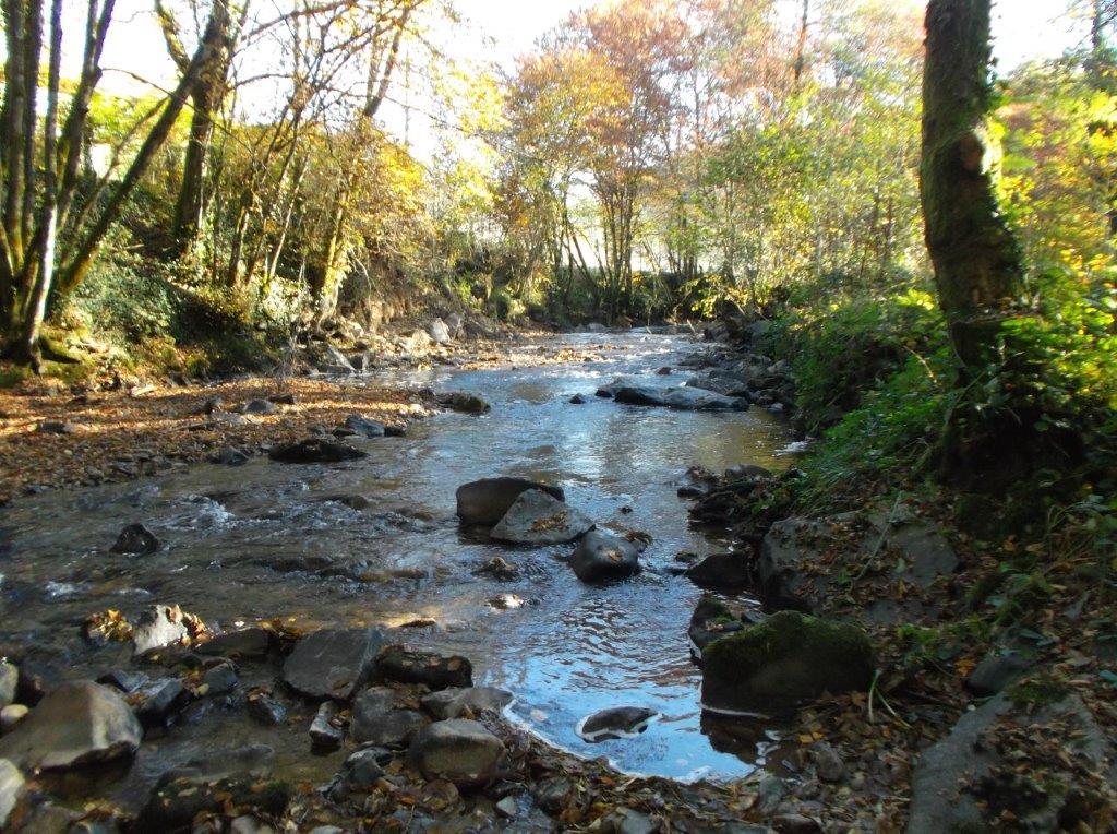 Nos rivières